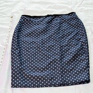 Ann Taylor size 10 Navy blue with gray Polka dots